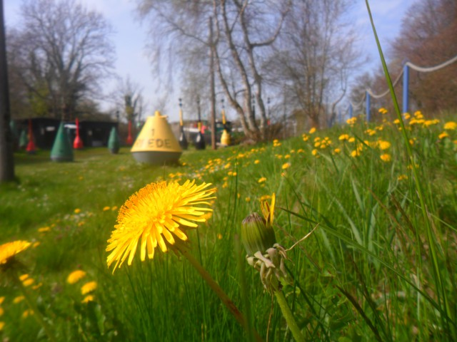 Rügen Frühjahrsurlaub: Gewinnaktion