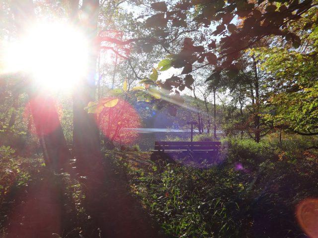 Woche der Nachhaltigkeit auf der Insel Rügen